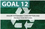 goal 12
